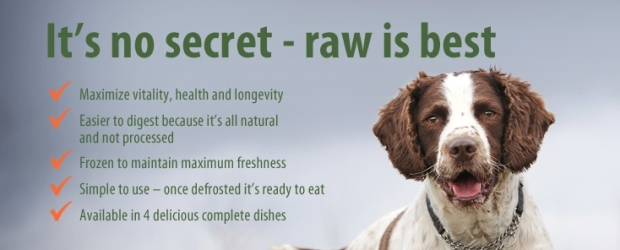 dog-raw-food