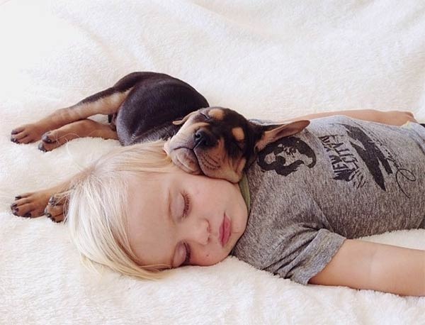 Sleeping-With-Dogs-10