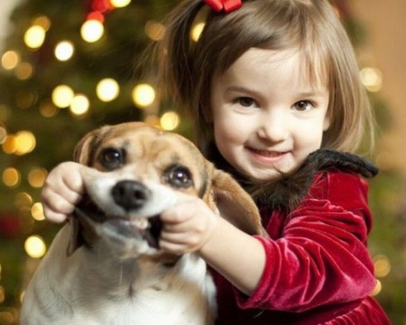funny-christmas-girl-dog-smile